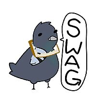 Swaggy Pigeon Photographic Print