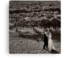 Romance in the Grapevines Canvas Print