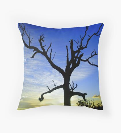 And when I am old Throw Pillow