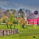 Living on the Farm by Monica M. Scanlan