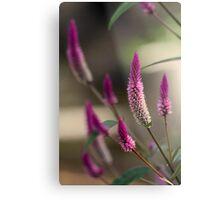 """Purple Tails"" Metal Print"