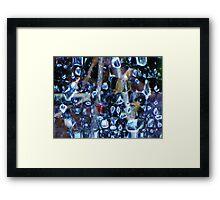 web of nature Framed Print