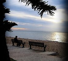 Sunrise Seat - Redcliffe by anatunkia
