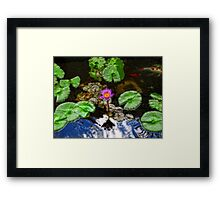 Tranquility - Lotus Flower Koi Pond by Sharon Cummings Framed Print