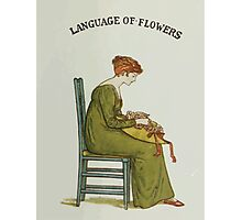 Language of Flowers Kate Greenaway 1884 0005 Title Plate 2 Photographic Print