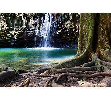 Hawaiian Falls, Maui Photographic Print