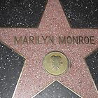Hollywood Star by broerse1