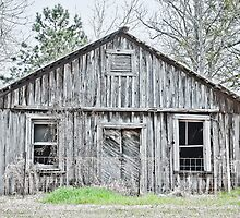 weathered by Phillip M. Burrow