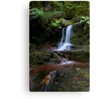 deep in the woods... #2 Canvas Print