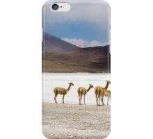 Vicuñas in the lagoon of Andes in Bolivia iPhone Case/Skin