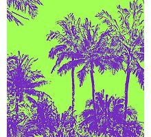 Makena Beach Hawaiian Sketchy Palms - Purple and Lime Green Photographic Print