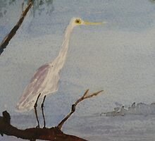 Egret on the Coopers Creek, South Australia. by Kay Cunningham