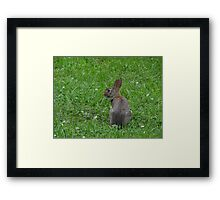 Don't turn your back to me Framed Print