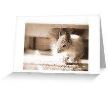 Sepia Squirrel Greeting Card