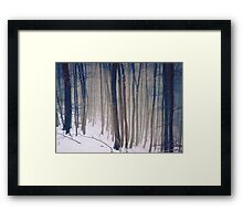 Whispers of the Forest - Forest Trees with Snow Framed Print