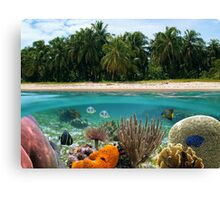 Tropical beach and underwater marine life Canvas Print