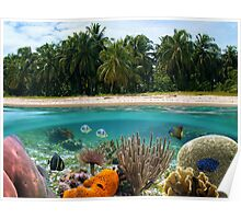 Tropical beach and underwater marine life Poster