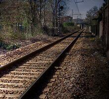 off the rails by Davide Ferrari