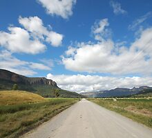 The Road To Glen Davis by rossco