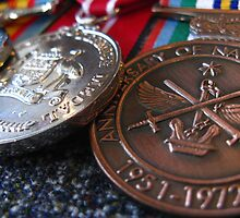 Blueys Medals by Sandy Sutton