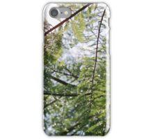 Glistening Fir iPhone Case/Skin