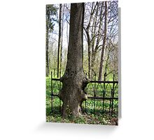 strong nature Greeting Card