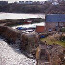 Crail Harbour by Lynden