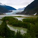 Alaskan Beauty by Barbara  Brown