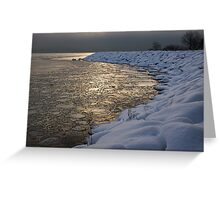 Lily Pad Ice Shines in the Silver Storm Light  Greeting Card