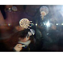 Camera obscura Photographic Print