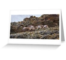 Otter family Greeting Card