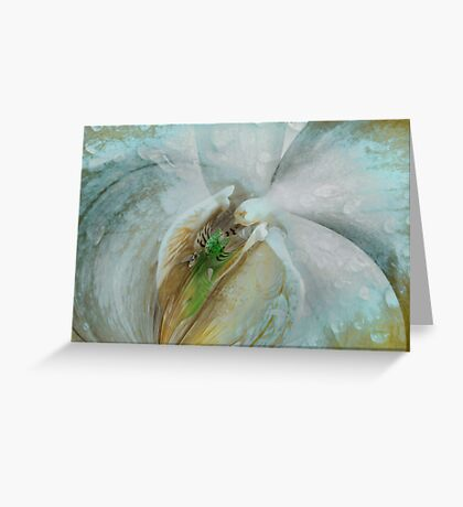 Wet Dreams Greeting Card