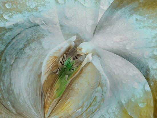 Wet Dreams by linaji