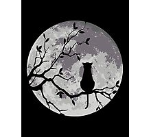 The Cat And The Moon Photographic Print