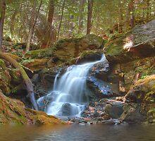 Wilton Falls Wilton, NH by Eric Snyder