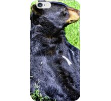 Brown Bear sitting on a hill iPhone Case/Skin