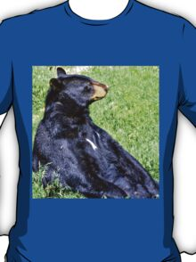 Brown Bear sitting on a hill T-Shirt