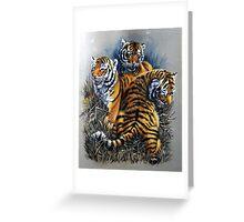Tiger cubs three. Greeting Card
