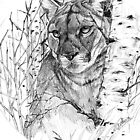 Puma by Robert David Gellion