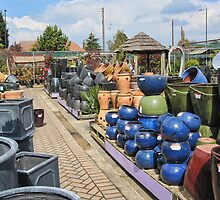Pots Galore by Ray Clarke