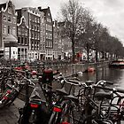 Bikes along a canal in Amsterdam by Laura Sanders