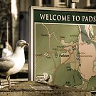 Welcome to padstow by Simon Marsden