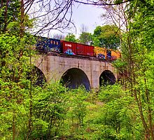 CSX Train Trussel by David Owens