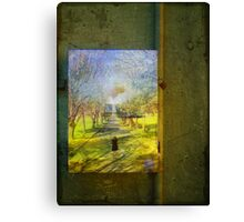 Seeing Canvas Print