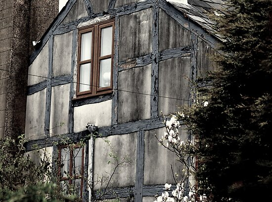 A House In Need Of Care by Stan Owen