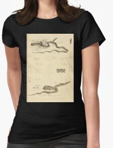 The Reptiles of British India by Albert C L G Gunther 1864 0521 Snakes Womens Fitted T-Shirt