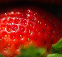 Strawberry by Sunshinesmile83