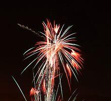 CFA Fireworks Convention #2 by Janet Rymal