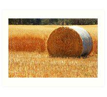 Hay Roll Art Print