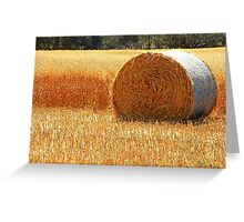 Hay Roll Greeting Card